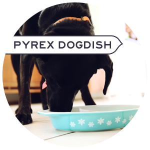 Lola loves Pyrex too!