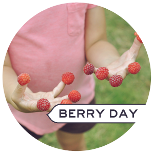 Berry day